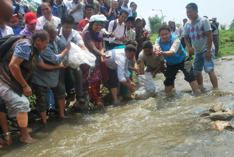 GPA and partners released fish into the Bagmati River at the start of World Environmental Week in Nepal
