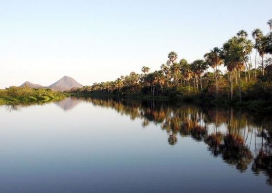 Alto Paraguay has a rich biodiversity ranging from the Pantanal to the Chaco.